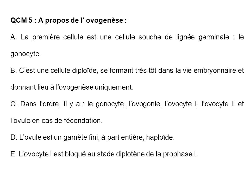 QCM 5 : A propos de l ovogenèse :