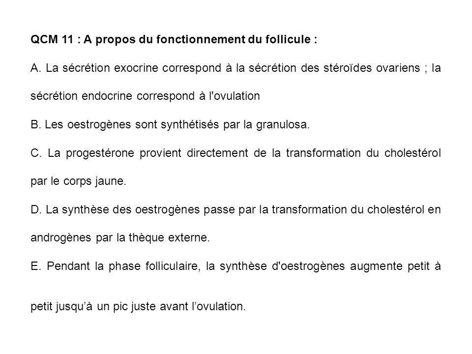 QCM 11 : A propos du fonctionnement du follicule :
