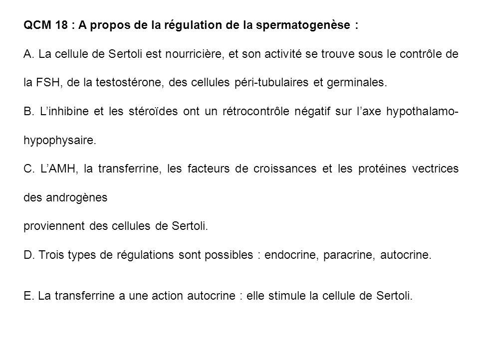 QCM 18 : A propos de la régulation de la spermatogenèse :