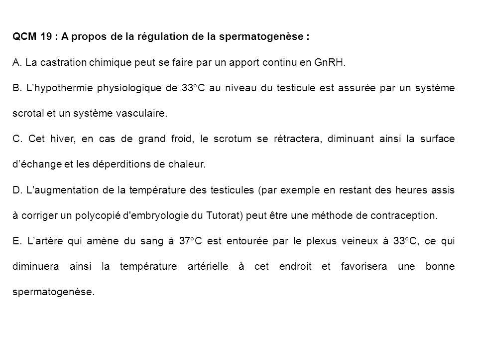 QCM 19 : A propos de la régulation de la spermatogenèse :