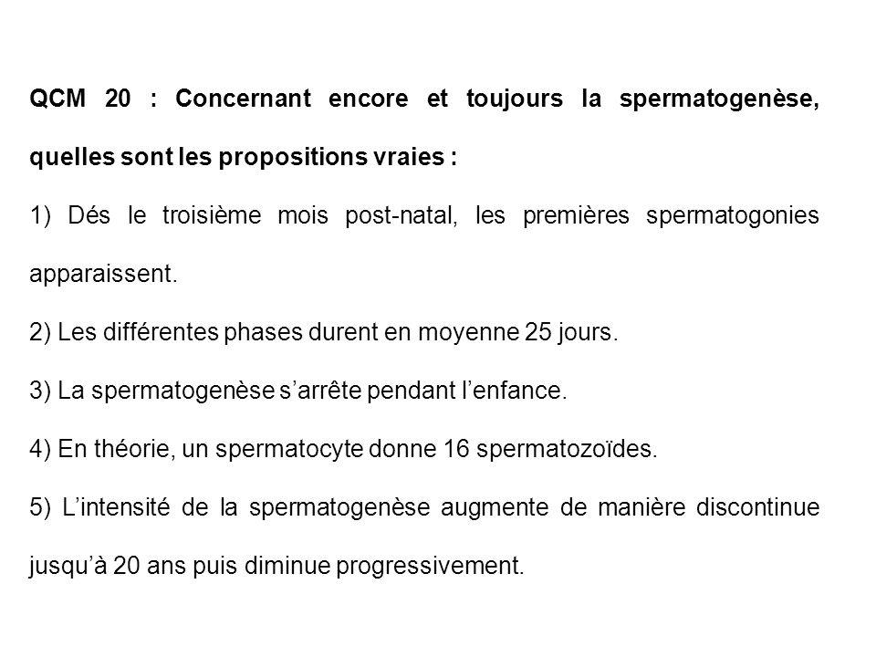 QCM 20 : Concernant encore et toujours la spermatogenèse, quelles sont les propositions vraies :
