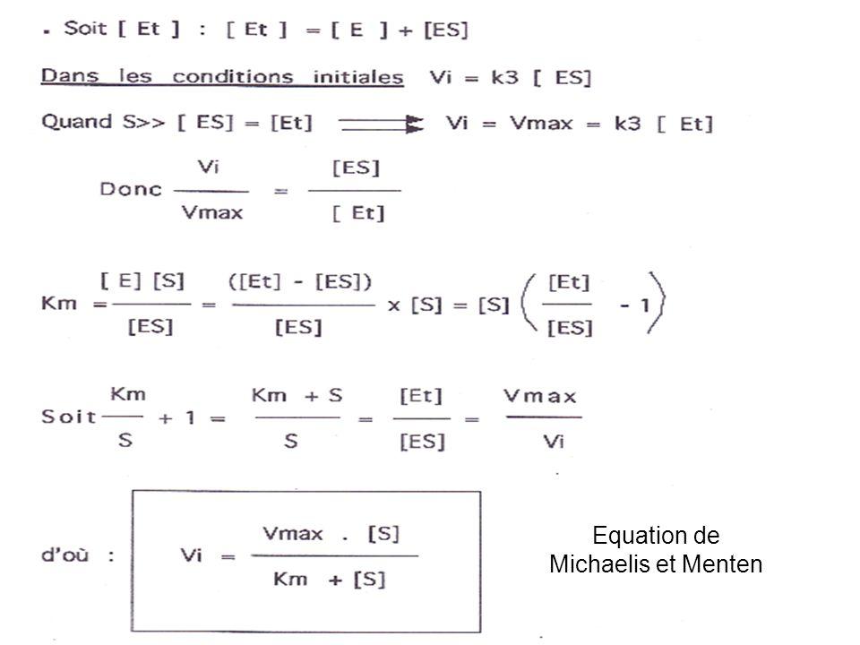 Equation de Michaelis et Menten