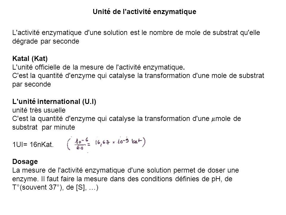 Unité de l activité enzymatique