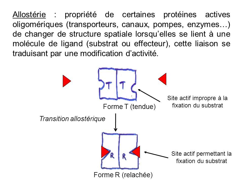 Allostérie : propriété de certaines protéines actives oligomériques (transporteurs, canaux, pompes, enzymes…) de changer de structure spatiale lorsqu'elles se lient à une molécule de ligand (substrat ou effecteur), cette liaison se traduisant par une modification d'activité.