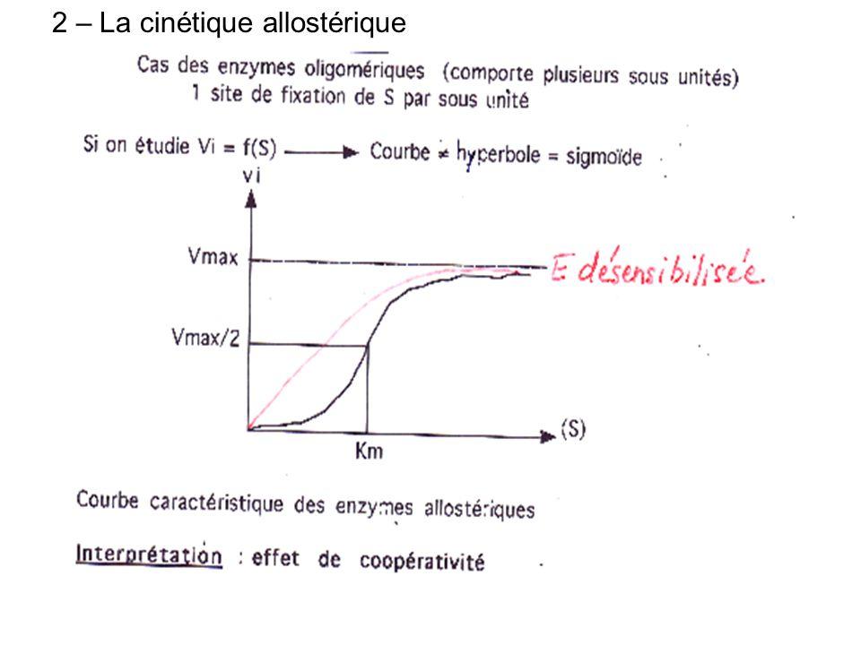 2 – La cinétique allostérique