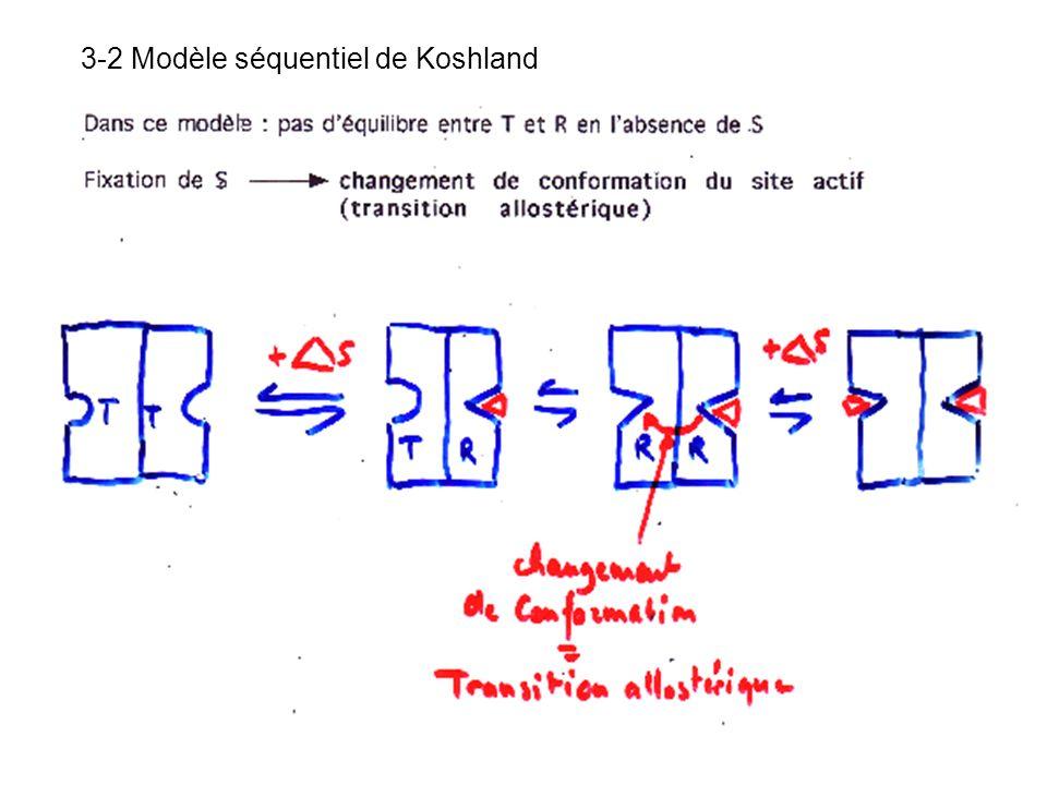 3-2 Modèle séquentiel de Koshland