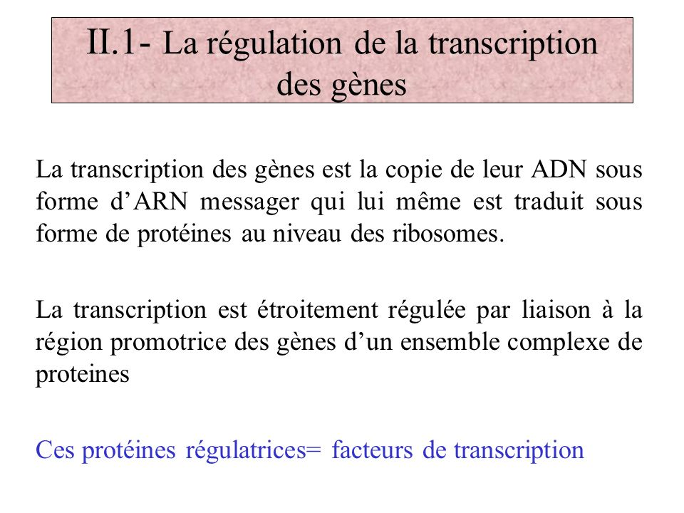 II.1- La régulation de la transcription des gènes