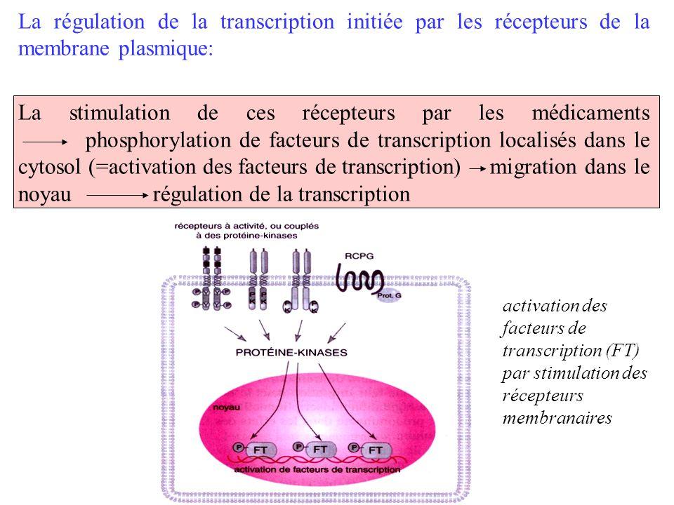 La régulation de la transcription initiée par les récepteurs de la membrane plasmique: