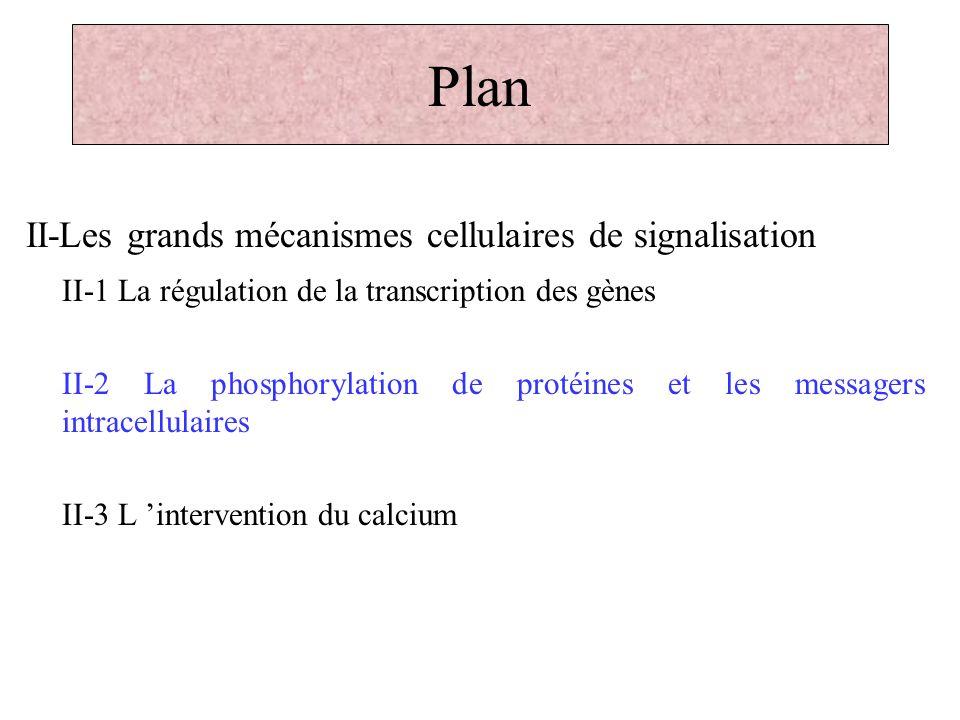 Plan II-Les grands mécanismes cellulaires de signalisation