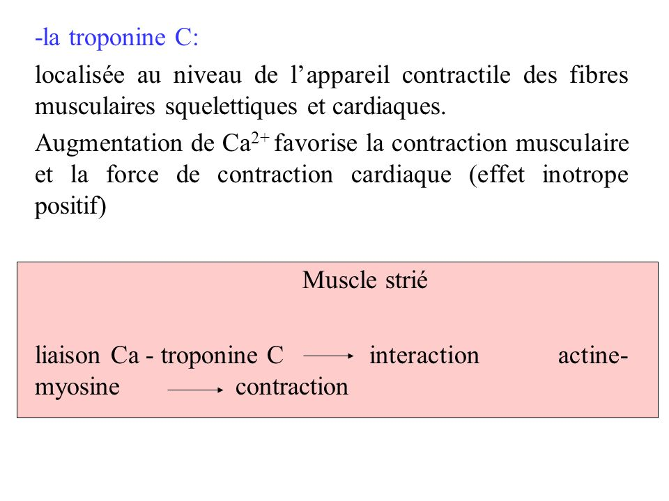 liaison Ca - troponine C interaction actine-myosine contraction