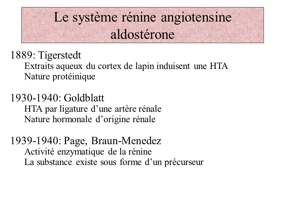 Le système rénine angiotensine aldostérone