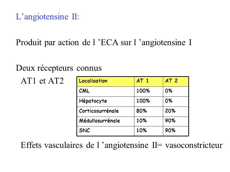 Produit par action de l 'ECA sur l 'angiotensine I