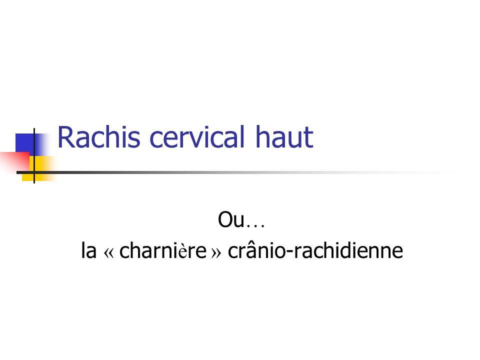 Ou… la « charnière » crânio-rachidienne