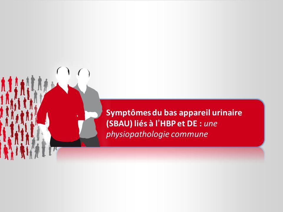 Symptômes du bas appareil urinaire (SBAU) liés à l'HBP et DE : une physiopathologie commune