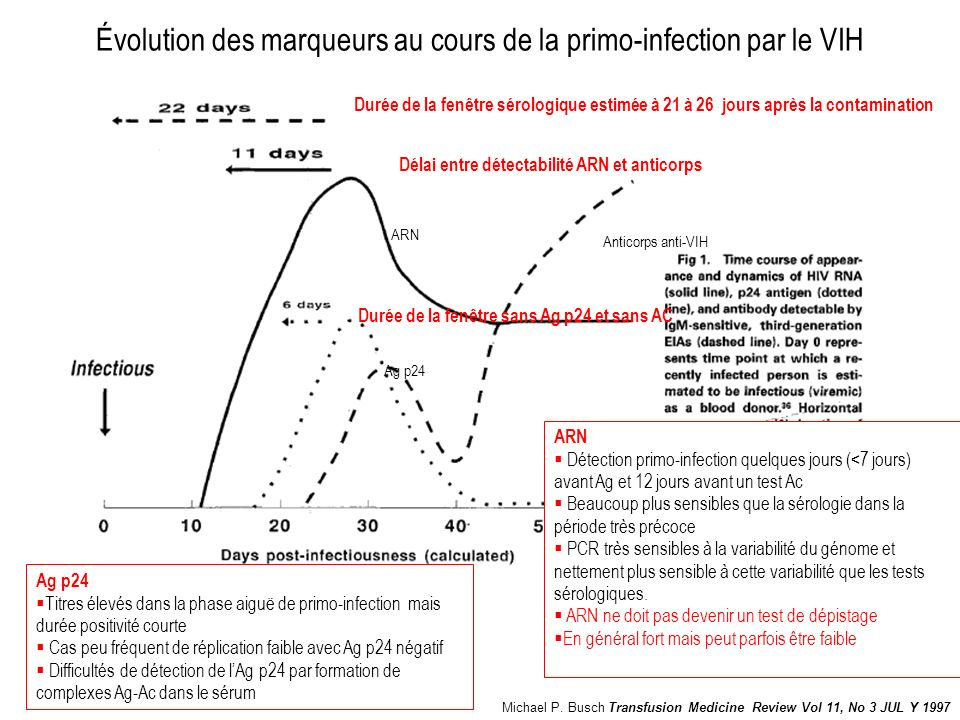Évolution des marqueurs au cours de la primo-infection par le VIH