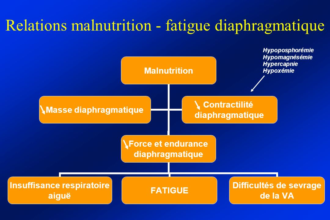 Relations malnutrition - fatigue diaphragmatique