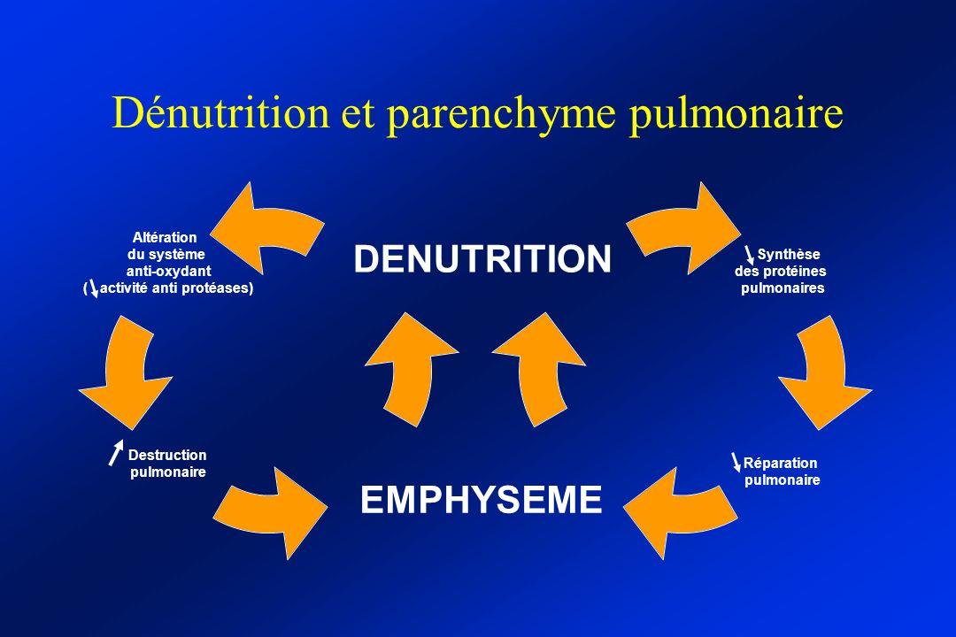 Dénutrition et parenchyme pulmonaire
