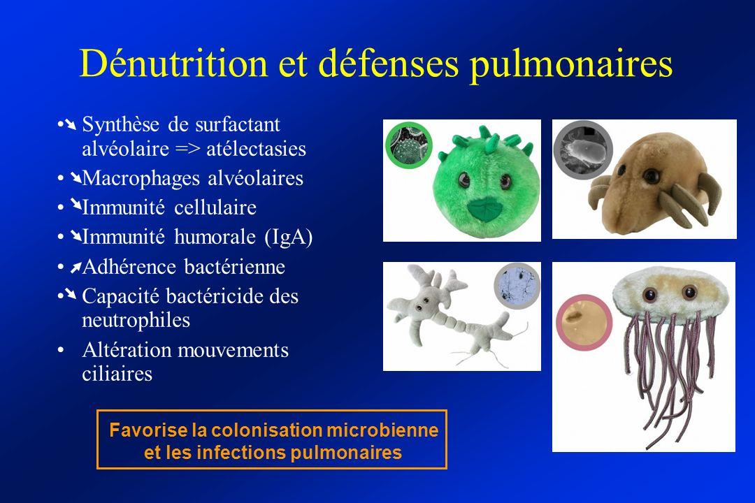 Dénutrition et défenses pulmonaires