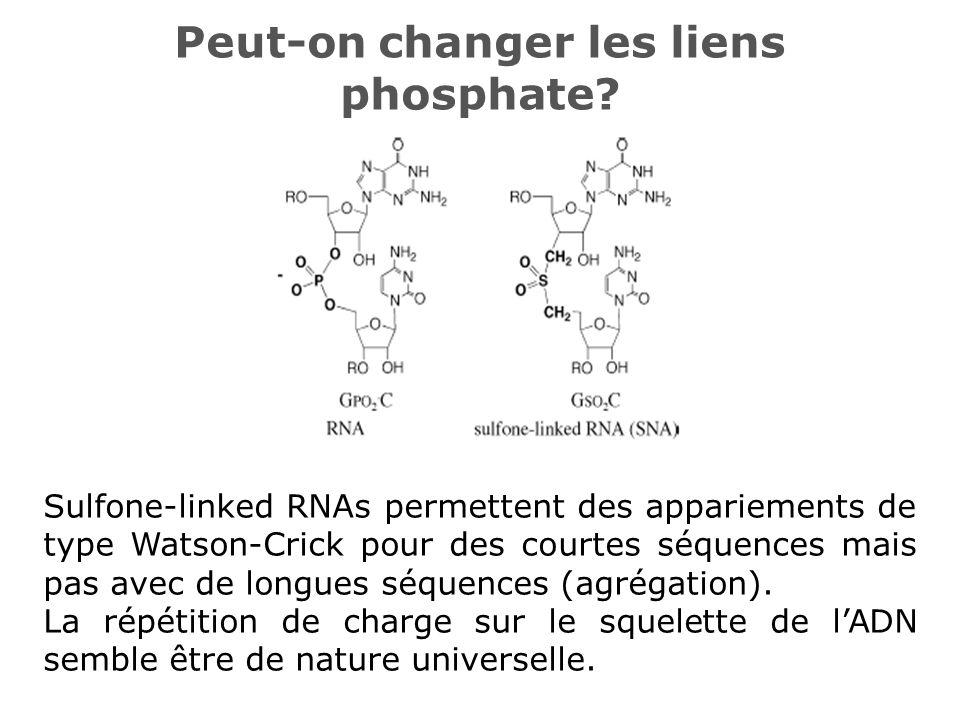 Peut-on changer les liens phosphate