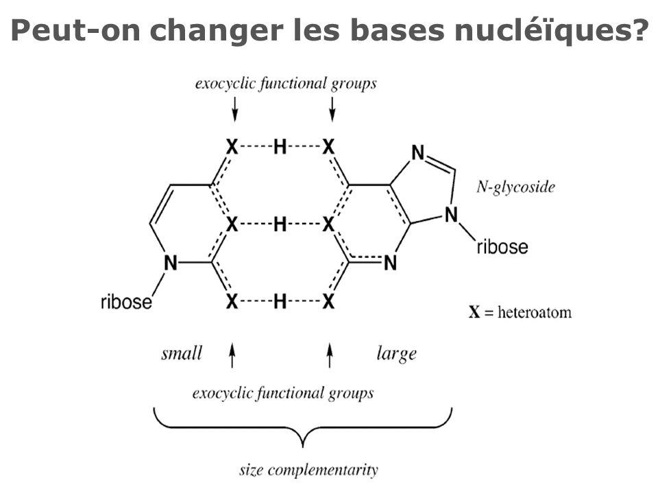 Peut-on changer les bases nucléïques