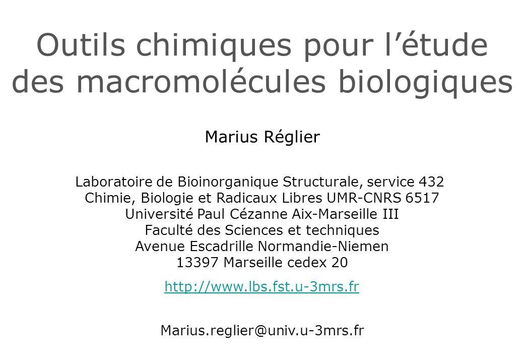 Outils chimiques pour l'étude des macromolécules biologiques