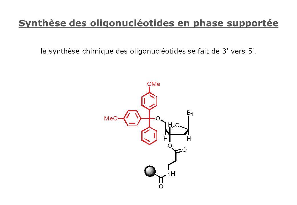 Synthèse des oligonucléotides en phase supportée