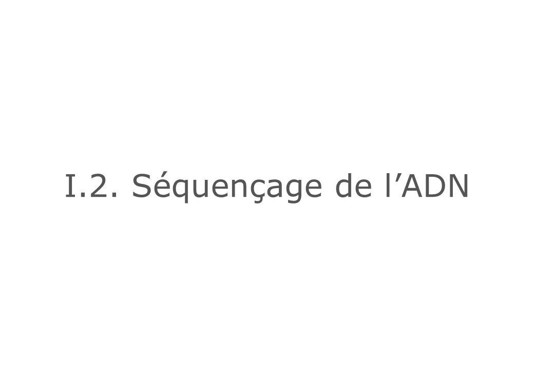 I.2. Séquençage de l'ADN