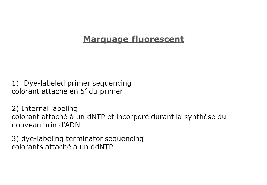 Marquage fluorescent Dye-labeled primer sequencing