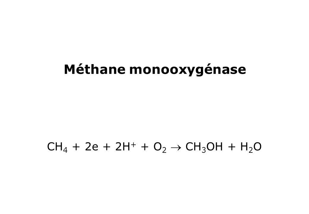 Méthane monooxygénase