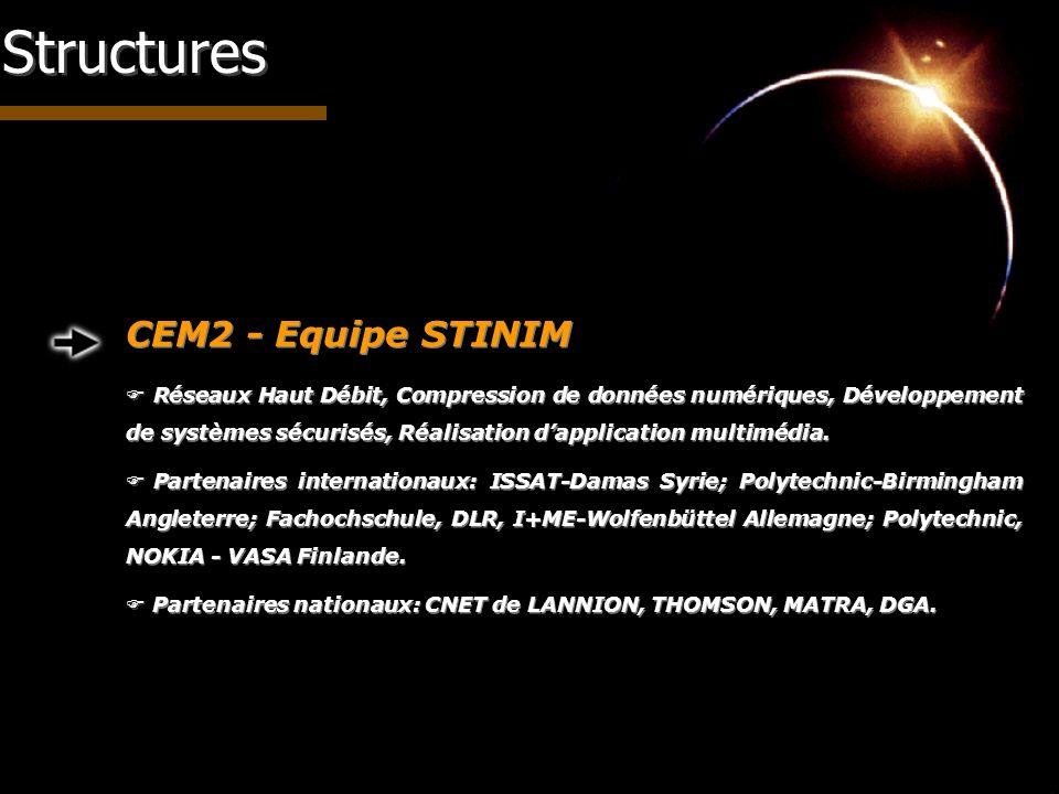 Structures CEM2 - Equipe STINIM