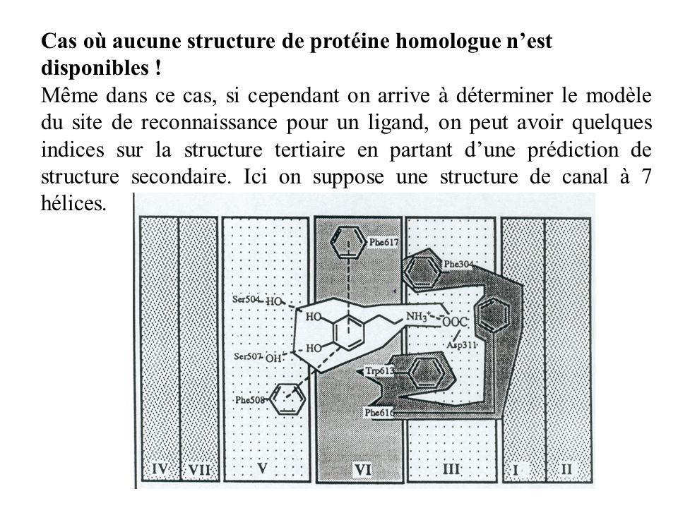 Cas où aucune structure de protéine homologue n'est disponibles !