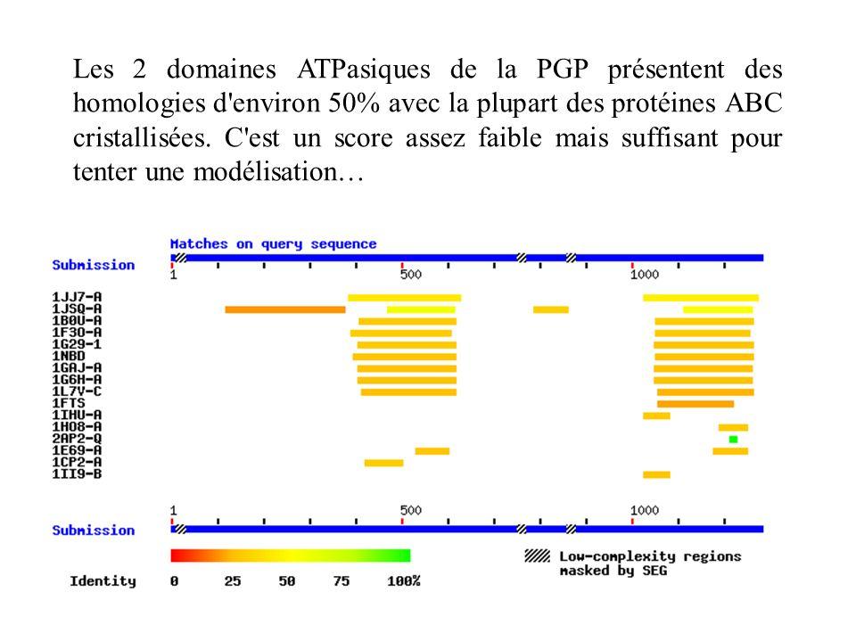 Les 2 domaines ATPasiques de la PGP présentent des homologies d environ 50% avec la plupart des protéines ABC cristallisées.
