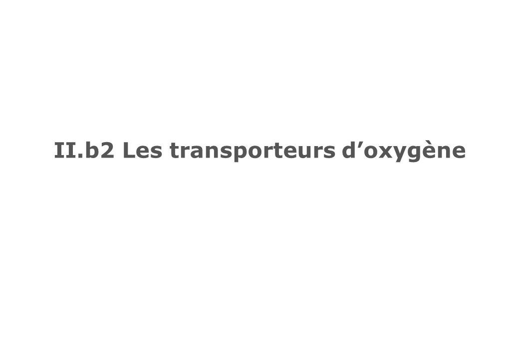 II.b2 Les transporteurs d'oxygène