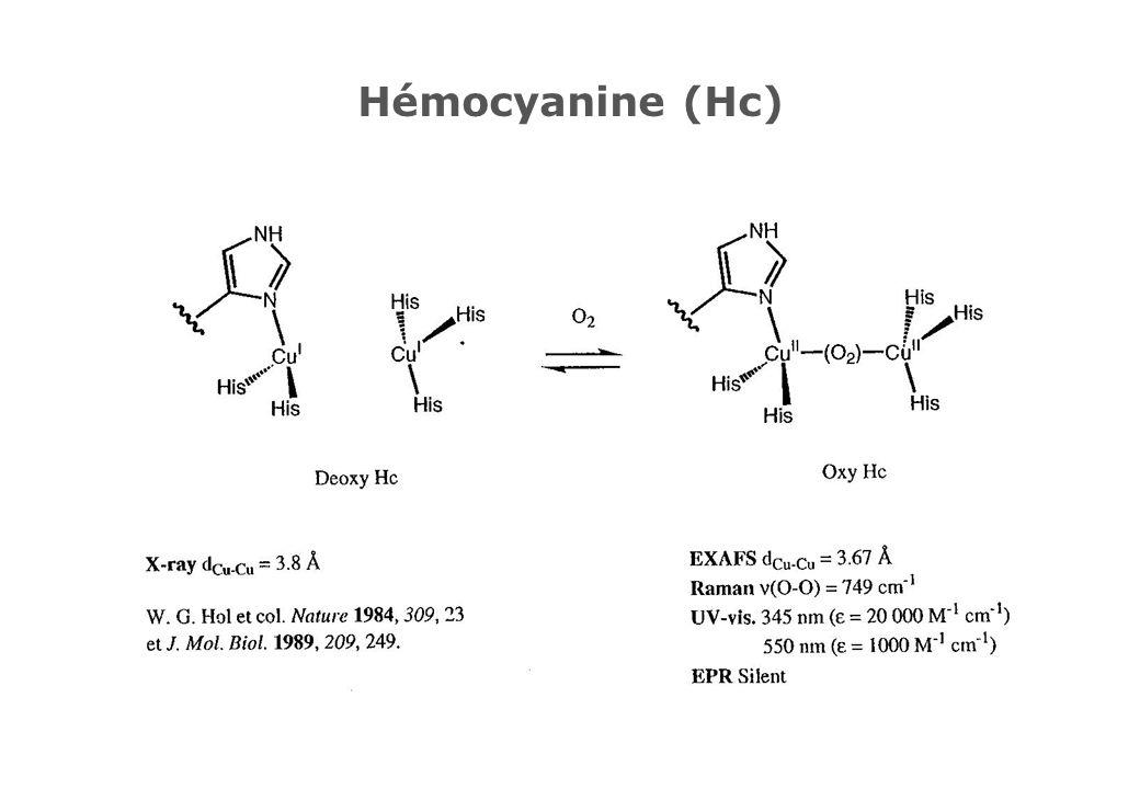 Hémocyanine (Hc)