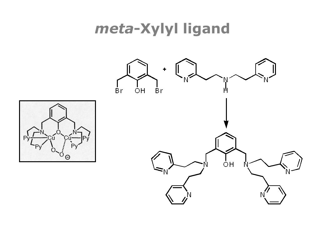 meta-Xylyl ligand
