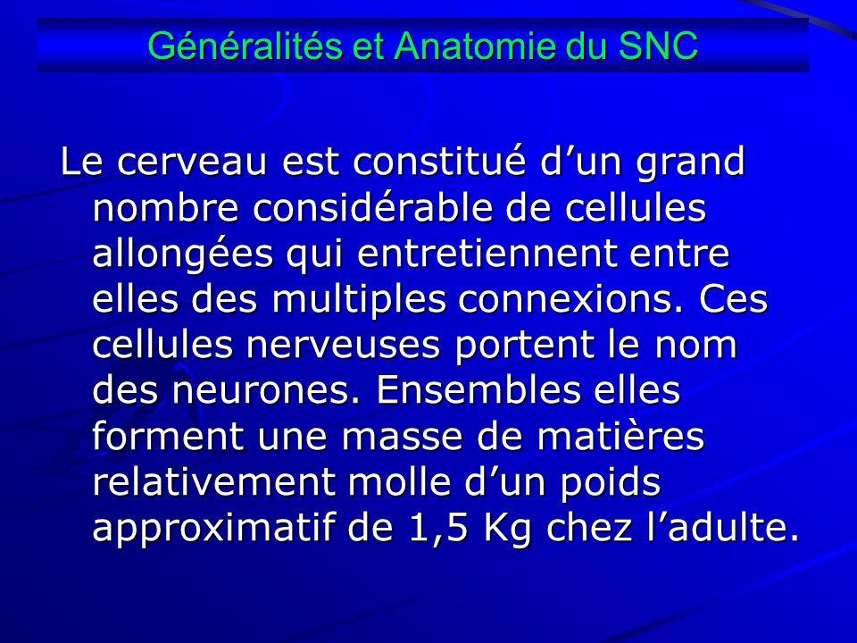 Généralités et Anatomie du SNC