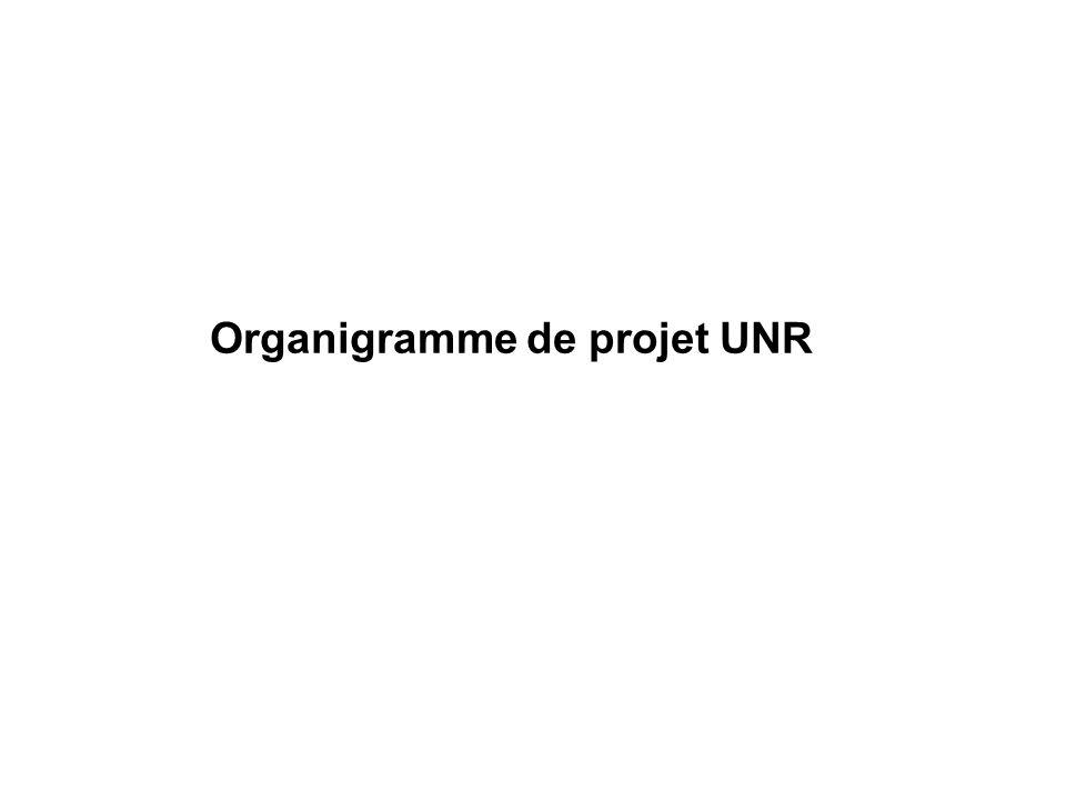 Organigramme de projet UNR