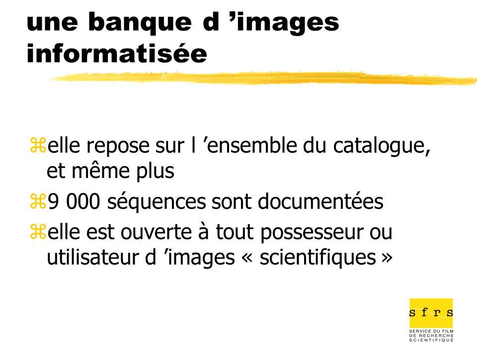 une banque d 'images informatisée