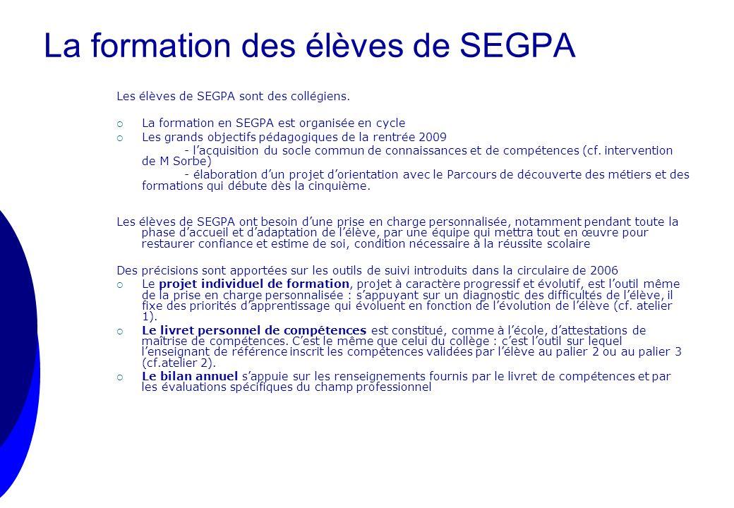 La formation des élèves de SEGPA