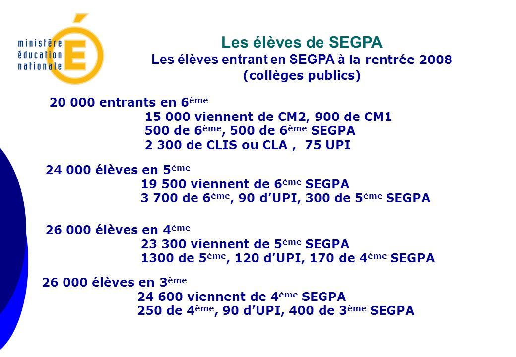 Les élèves entrant en SEGPA à la rentrée 2008