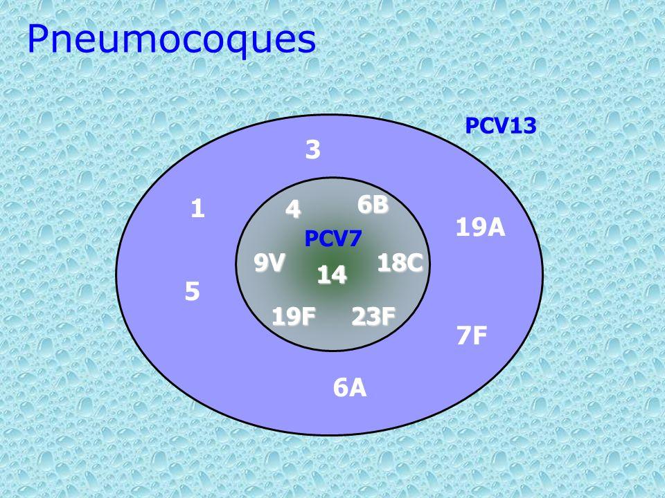 Pneumocoques PCV13 3 4 14 9V 18C 23F 19F 6B PCV7 1 19A 5 7F 6A 39 39