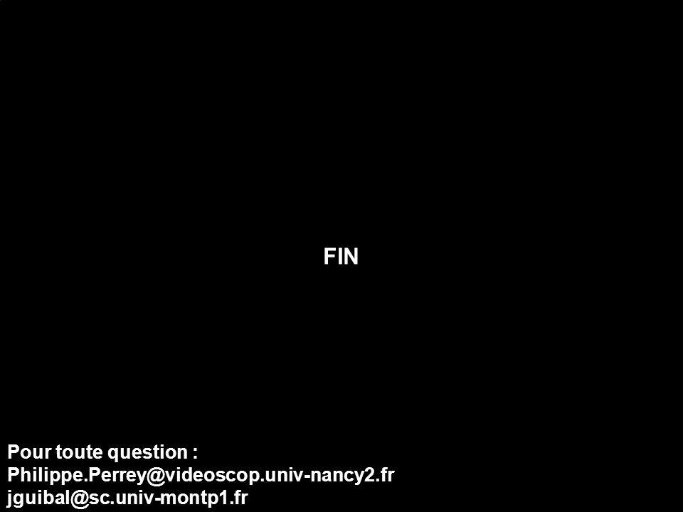FIN Pour toute question : Philippe.Perrey@videoscop.univ-nancy2.fr