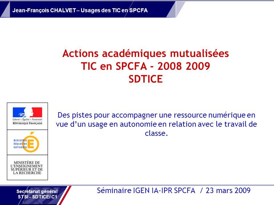 Actions académiques mutualisées TIC en SPCFA - 2008 2009 SDTICE