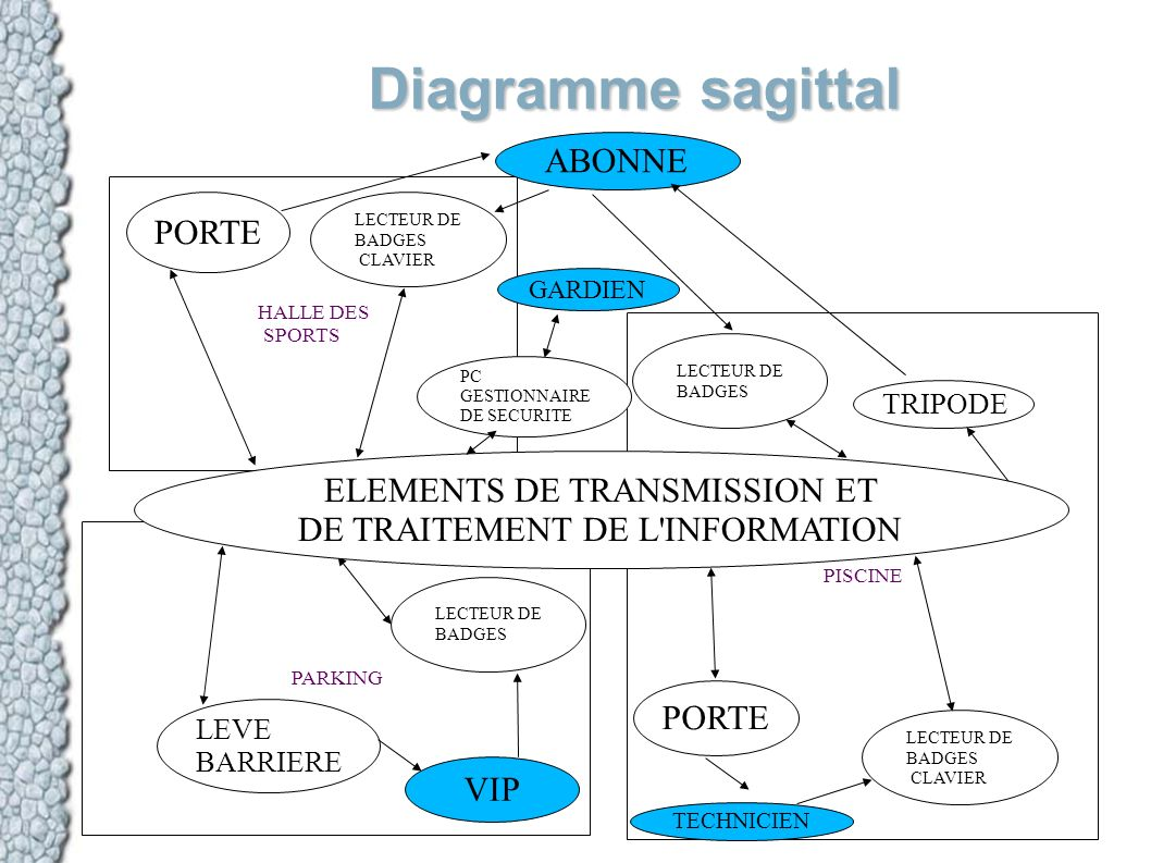 Diagramme sagittal ABONNE PORTE ELEMENTS DE TRANSMISSION ET