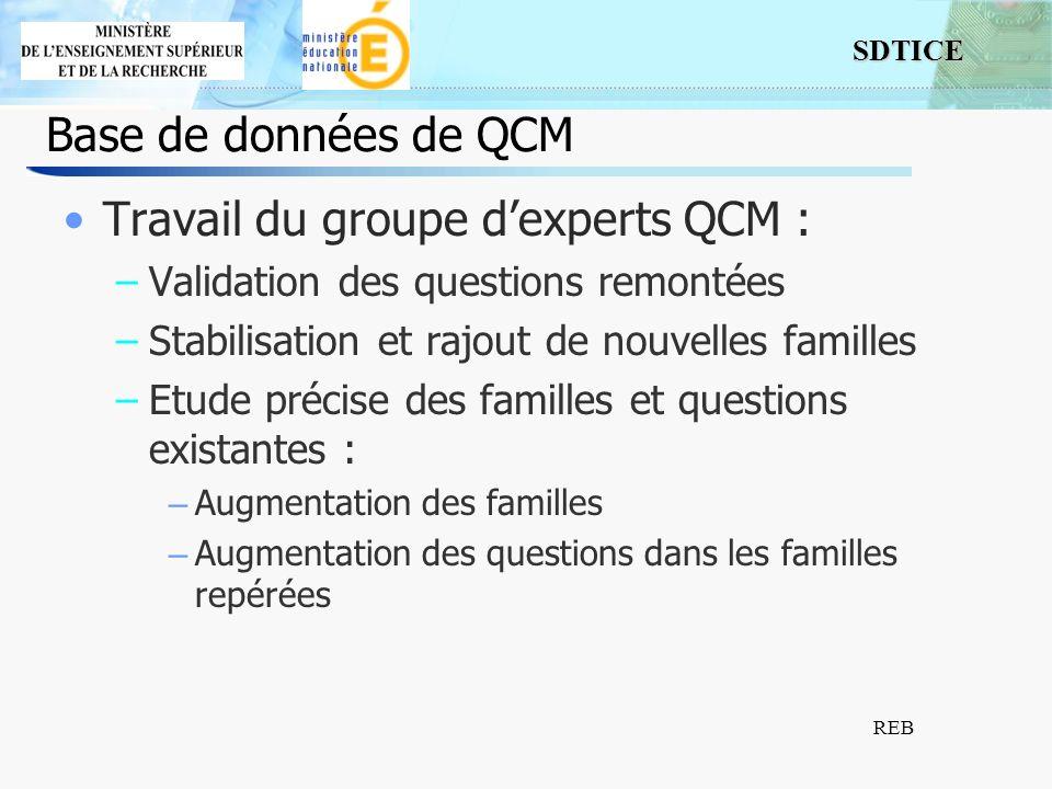 Travail du groupe d'experts QCM :