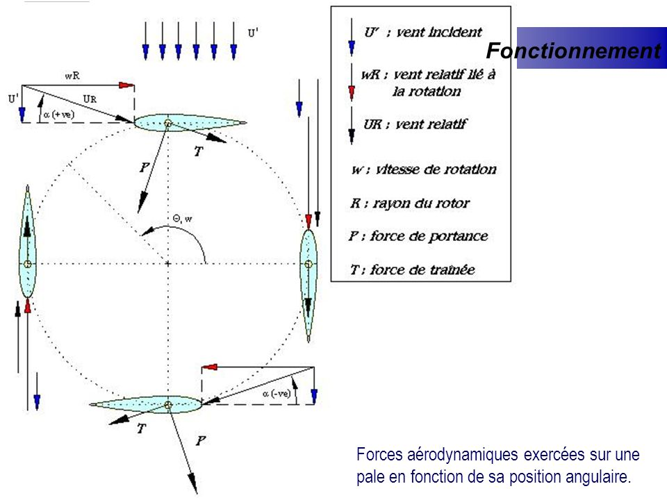 Fonctionnement Forces aérodynamiques exercées sur une pale en fonction de sa position angulaire.