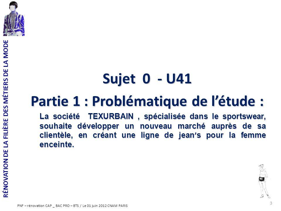 Partie 1 : Problématique de l'étude :