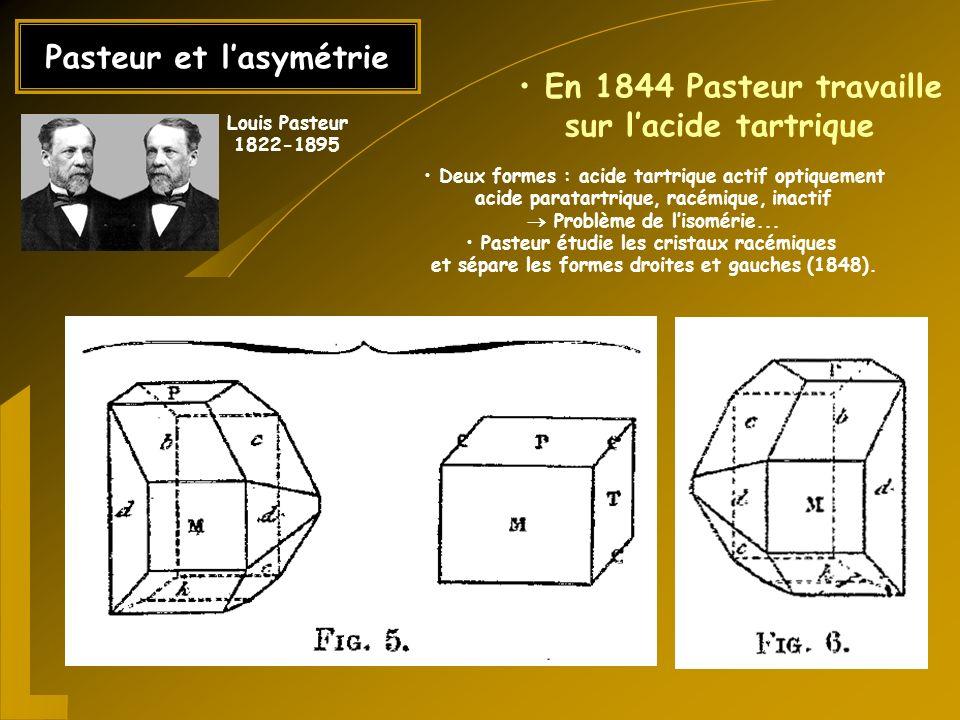 Pasteur et l'asymétrie