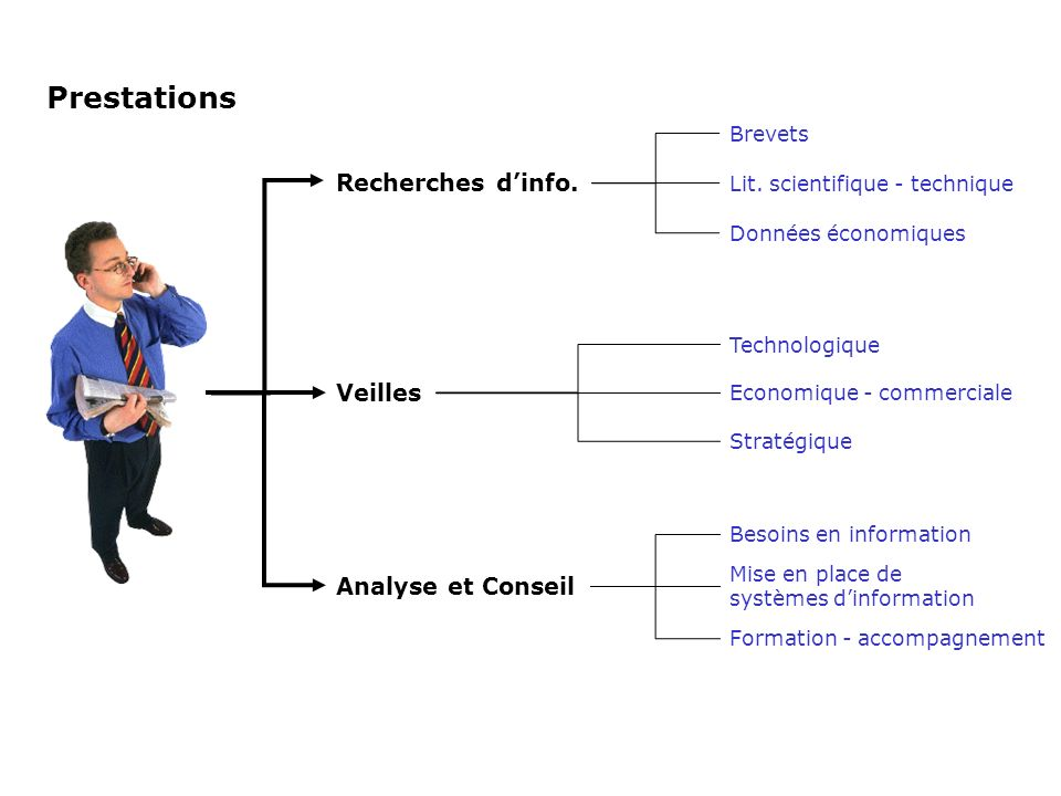 Prestations Recherches d'info. Veilles Analyse et Conseil Brevets
