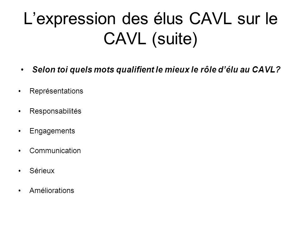 L'expression des élus CAVL sur le CAVL (suite)